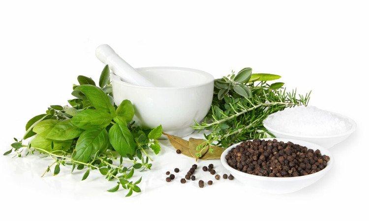 Plantas para tratamento da ansiedade com aromaterapia