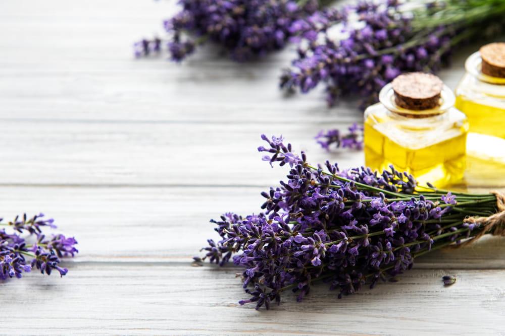 Benefícios dos óleos essenciais para a saúde: toalha, frasco de óleo e flores de lavanda.