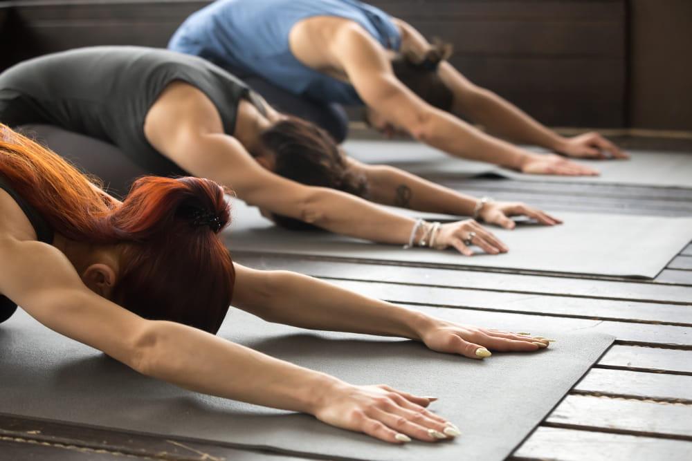 Princípios do Pilates: concentração: grupo praticando exercícios de pilates.